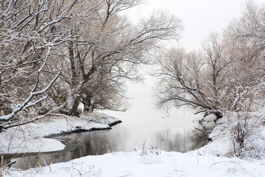 Winter Magic at Okanagan Lake